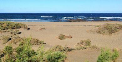 playa cabezo medano tenerife sur