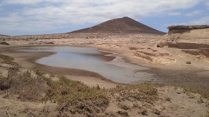 reserva natural montaña roja charco aves